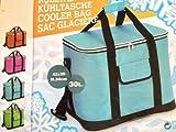 2 Größen Kühltasche Kühlbox Picknicktasche Campingtasche Isoliertasche Tasche (Pink, 42x34x26 cm (groß))