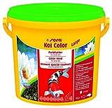 sera 07025KOI COLOR LARGE 3800 ml - Farbfutter für langlebige