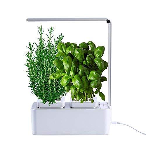 VASO SMART- Smart Garden - serra idroponica per piante, vaso intelligente, grow box - Orto da interno 100{1654c82e570aa99a564f1a8a145d9a603203c048e6b67d4709fd52cd468fa549} Bio - Coltiva le erbe aromatiche- lampada smart luce Led inclusa - dimensioni 28,5 x 26,5 x 37 cm