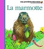 La marmotte   Peyrols, Sylvaine (1949-....). Auteur. Illustrateur