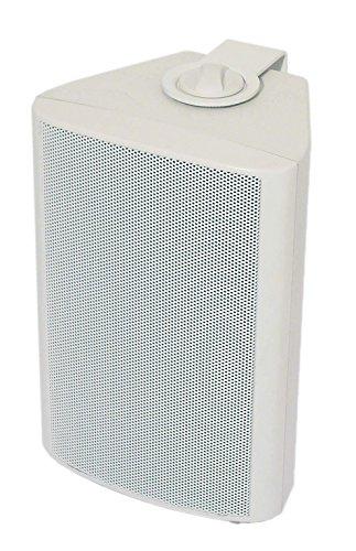 100-v-Übertrager (Visaton 50310 Lautsprecher WB 10, 100V+8 Ohm weiß)