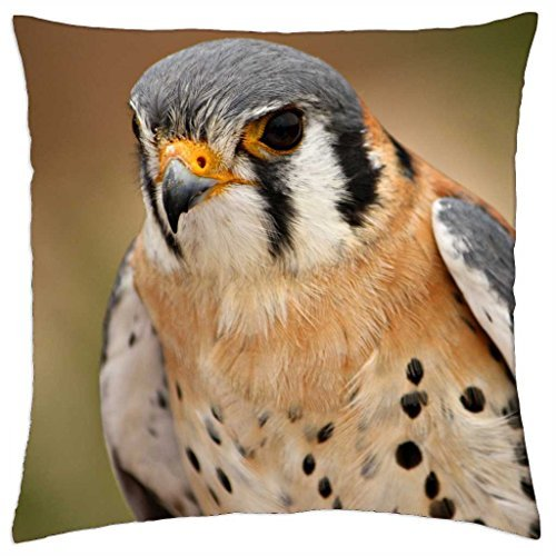 falcon-throw-pillow-cover-case-18-x-18