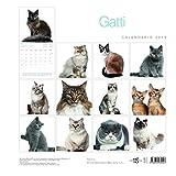 Gatti-Calendario-da-Muro-2019