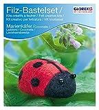 Glorex GmbH 6 2902 601 - Filz-Creativ-Set Marien- käfer, 7 x 3,5 cm
