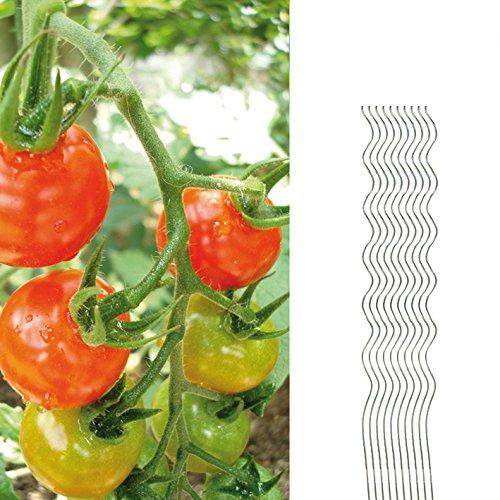 10 Tomatenspiralstäbe 150cm voll verzinkt Tomatenstab Tomaten Ranke Pflanzstab Stahl Profi Qualität Tomatenspiralstab (Tomate)