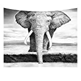HOTNIU Arazzi e Tappezzeria Unique Tapestry, Tapetto Decorativo da Parete Arazzo da Muro da Motivo Fiori per Decorare Pareti Tavoli Tovaglia da Picnic e Telo da Mare (150 * 230 cm, Pattern #5)