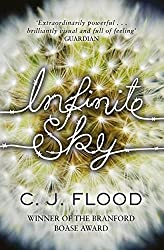 Infinite Sky by C. J. Flood (2014) Paperback
