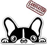 Vinyl Aufkleber Autoaufkleber Sticker Dog Hund Französische Bulldogge Auto Moto Motorrad Fahrrad Skate Helm Fenster Spiegel Tür Tuning B 88