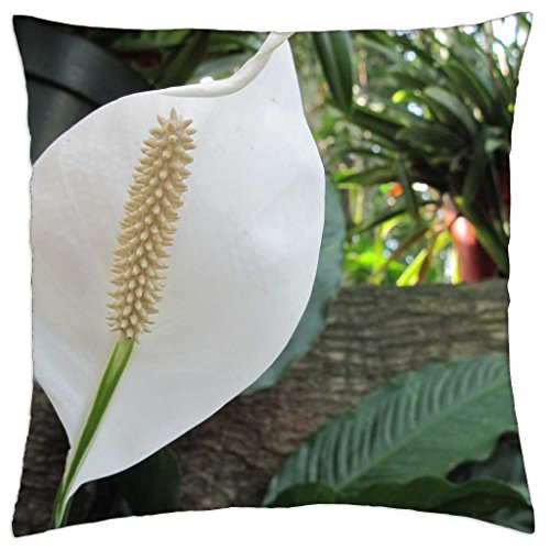 spring-blooms-14-lily-throw-pillow-cover-case-18-x-18