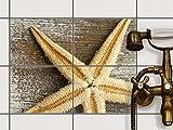 creatisto Mosaikfliesen Dekorsticker | Fliesen Aufkleber Folie Sticker selbstklebend Küche renovieren Bad Wandtattoo | 20x15 cm Design Motiv Starfish - 4 Stück