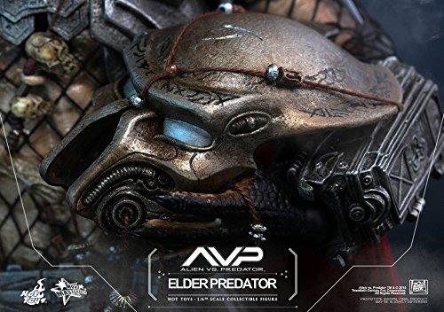 Hot Toys ht9025671: 6Escala Elder Predator Figura 6