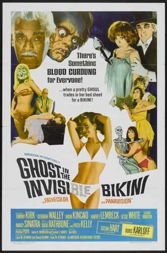 Ghost In Invisible Bikini Poster 01 A3 Box Canvas Print