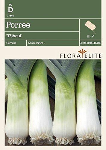 Lauchsamen – Porree D´Elbeuf von Flora Elite
