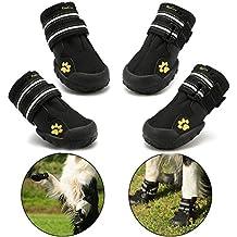 c25ed514c botas para perros - Amazon.es