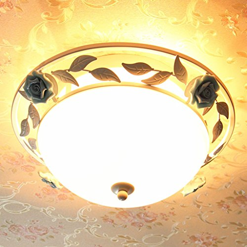 Mode Deckenbeleuchtung-WXP Französisch Wohnzimmer Schlafzimmer Licht ländlichen Stil Deckenleuchte Circular Das Mittelmeer Blumen, Eisen, Glas-Deckenleuchte im europäischen Stil einfachen Warm-Lampen Kinderzimmerbeleuchtung Innenraum Lampen-WXP ( größe : Durchmesser 50cm ) (- Beleuchtung Französischen Eisen Lampe Bad)