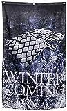 Game of Thrones 30x50 Banner Winter is Coming - Stark