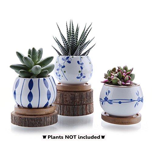 T4U 7cm lancao Series Keramik Sukkulenten Töpfe Kaktus Pflanze Töpfe Mini Blumentöpfe mit Bambus Untersetzer 3 Stücke Set