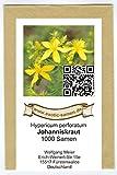 Johanniskraut – Hypericum perforatum – Zier-/Arzneiplanze – Sorte Topaz – 1000 Samen - 2
