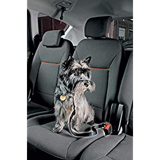 DBS Adjustable Dog Safety Belt for Car/Car - Ideal for Carrying Dogs and Animals