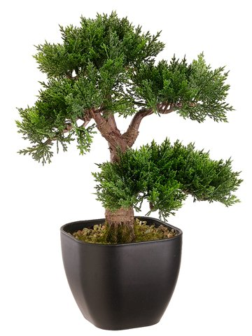 contenitore-cedro-bonsai-artificiale-in-nero-15-