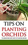 Tips on Planting Orchids: To Understand Every Aspect of Planting Orchids