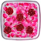 Desert Town® Diwali Decoration 6 Pc. Red Golden Rose Floating Candle Set