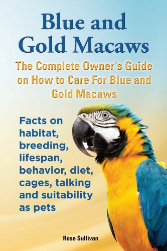 Blue and Gold Macaws (English Edition)