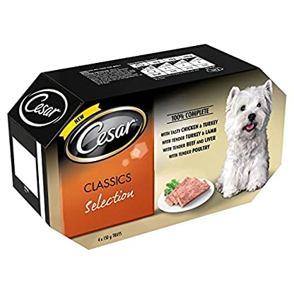 Cesar Classics Wet Dog Food for Adult Dogs 1+ Mixed Selection in Jelly, 4 x 150g 1