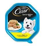 Cesar Senior 10+ Cibo per Cane con Delizioso Pollo e Riso in Una Delicata Gelatina 150 g - 14 Vaschette