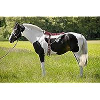 Norton Bareback Equitación Almohadilla