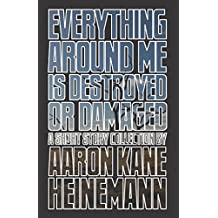 Everything Around Me is Destroyed or Damaged