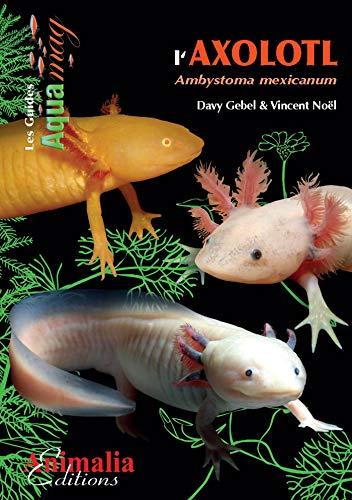 Les axolotls: Ambystoma mexicanum (Les Guides AQUAmag)