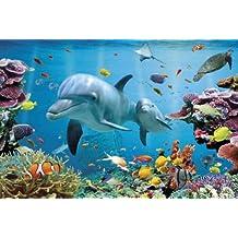Empire 399892 - Póster de delfín y peces (91 ...