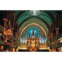 """Comparador de precios Glow in the Dark 1000 Piece Jigsaw Puzzle, 19.6"""" X 29.5"""" - Notre-Dame De Montreal by Tomax - precios baratos"""