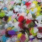 APOO Mischungs-Farben 40pcs / 2cm Wulstige Organza-Blumen-handgemachte Mini kleine Köpfchen für Einklebebuch-Hochzeits-Süßigk