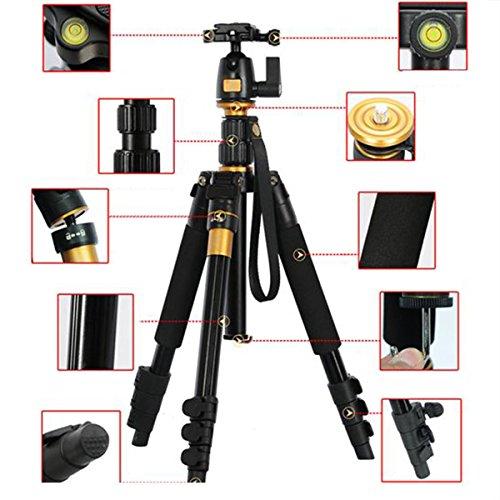 Lega di alluminio q-666q-555(LF393) treppiede monopiede e testa a sfera per Canon EOS 100D 800D 200D 1300D 1200D 700D 650D 750D 80D 77D 70D, 7D, 5D, Nikon D3400D3300D3200, D3100, D5300D5600D5300, D7500, D7000, D810, D610, FUJI FinePix X-S1, HS50, SL1000, Panasonic FZ72FZ82FZ1000, Olympus, Pentax K5, K30, K50, K500, Sony A65, A58, a7,7r & More DSLR-max altezza: 142cm, carico massimo: 8kg.