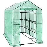 Songmics Invernadero de tomates Caseta para flores cultivos 143 x 215 x 195 cm GWP13L
