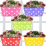 Trust basket Dotted Oval Railing Planter, Set of 5 (Magenta, Purple, Green, Red, Yellow)