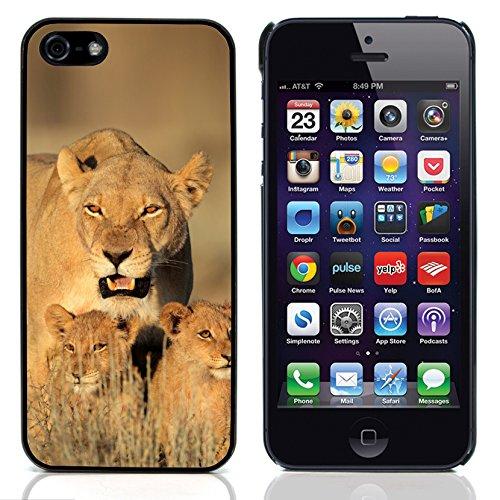 Graphic4You Löwe Tier Design Harte Hülle Case Tasche Schutzhülle für Apple iPhone 5 und 5S Design #3
