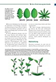 Pflanzliche Notnahrung: Survivalwissen für Extremsituationen - 10