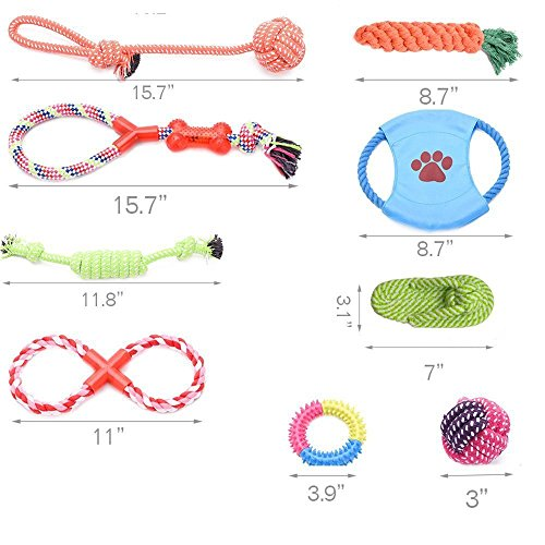 Gift-Set-for-Pet-Dogs--Great-for-Small-and-Medium-Sized-Dogs--Durable-Safe-and-Toxin-Free-Toys-Dogs-Dog-Toys10-items