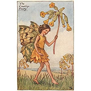 Cowslip Fairy by Cicely Mary Barker. Spring Flower Fairies - c1935 - old antique vintage print - art picture prints of Flower Fairies