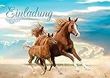 12 Einladungskarten zum Kindergeburtstag Pferd / Fohlen / zwei Pferde / schöne und bunte Einladungen für Mädchen (12 Karten)
