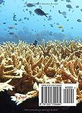 Image de Dive Log (registro de buceo en espanol): los mejores buceos son propios