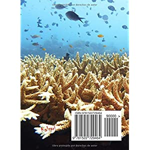 Dive Log (registro de buceo en espanol): los mejores buceos son propios