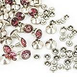 10mm Diamant NIET BOLZEN FÜR Leder Basteln mit bunt Acryl Strasssteine - perfekt für Riemen, Taschen oder Hundehalsband von Trimming Shop (10er Pack) - Plum, 10mm