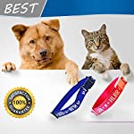 pet dogs and cats flea &tick collar with natural botanical essence for controlling remedy repelling flea egg, mosquito,lice with high-efficiency for large/medium/small dogs and cats (small dog) Pet Dogs and Cats Flea &Tick Collar with Natural Botanical Essence for Controlling Remedy Repelling Flea Egg, Mosquito,lice with High-efficiency for Large/Medium/Small Dogs and Cats (Small Dog) 51UBKoCOmXL