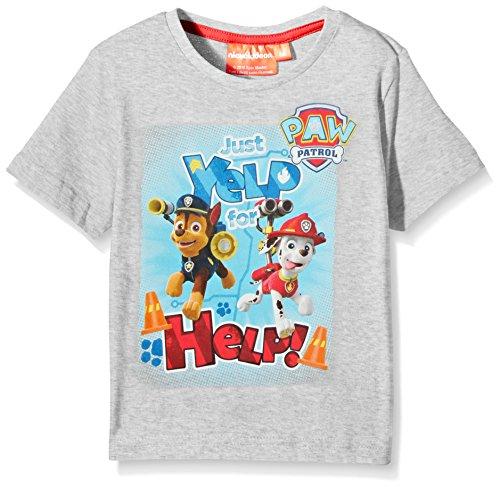 nickelodeon-paw-patrol-camiseta-ninas-gris-gris-light-grey-melange-3-anos