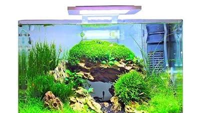 Blau Aquaristic - Nano-Aquarium Square 28 Liter - Basis Glas Aquarium