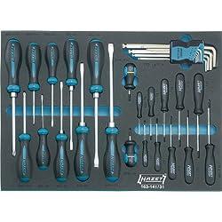 HAZET 163-141/31 Werkzeug-Sortiment